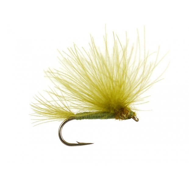 CDC Splitwing Olive